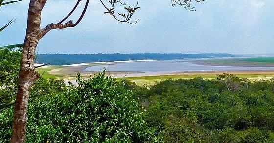 Amazonka ciekawostki