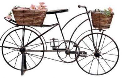 Rower ciekawostki