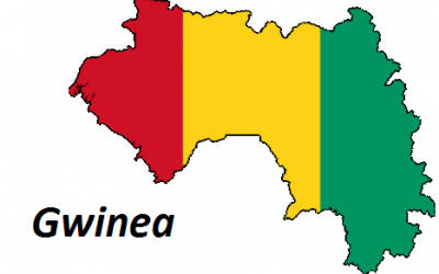 Gwinea ciekawostki
