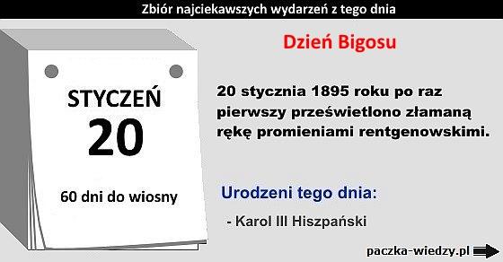 20styczeń