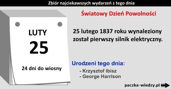 25lutego