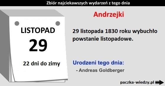 29listopada