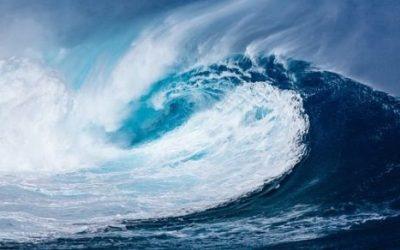Tsunami ciekawostki