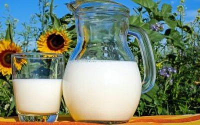 Mleko ciekawostki