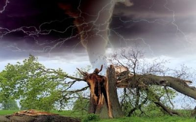 Tornado ciekawostki