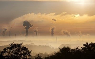 Smog ciekawostki