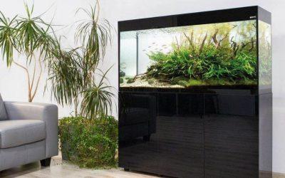 Jak dbać o akwarium, czyli nowości od Aquael, które trzeba poznać!