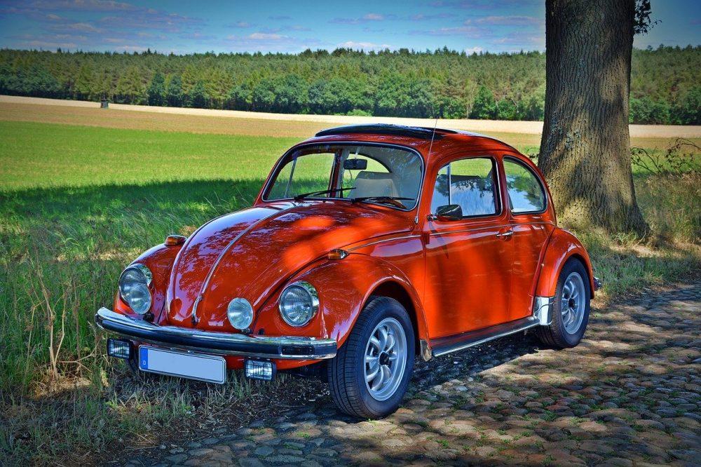 VW garbus grafika