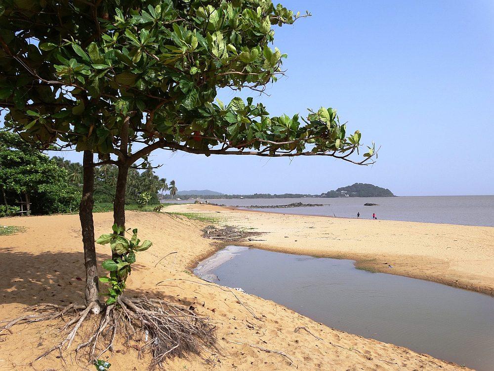 Gujana Francuska plaża