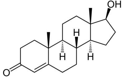 Testosteron ciekawostki